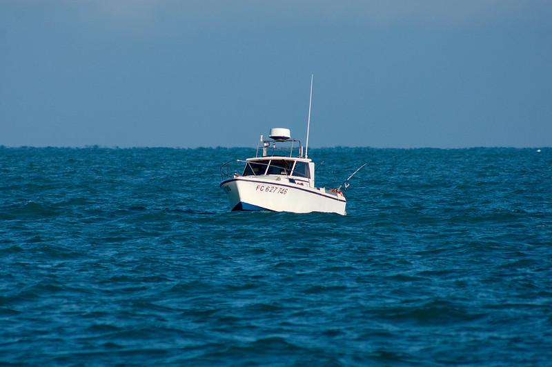 La pêche en mer à Calvi